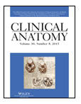 Clinical Anatomy Publication