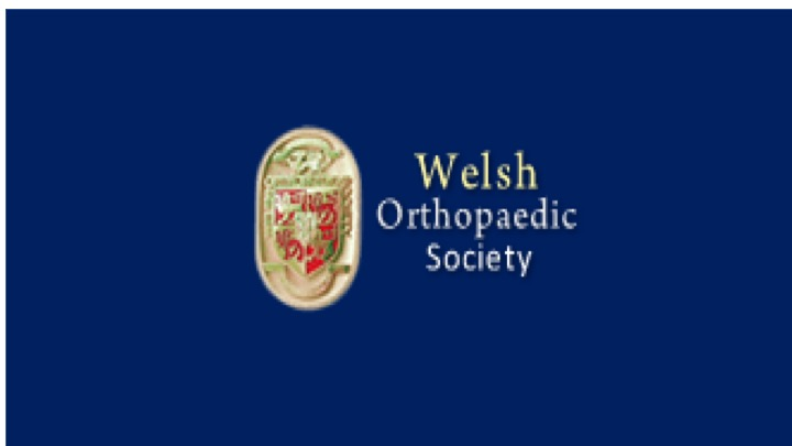 Welsh Orthopedic Society 2107